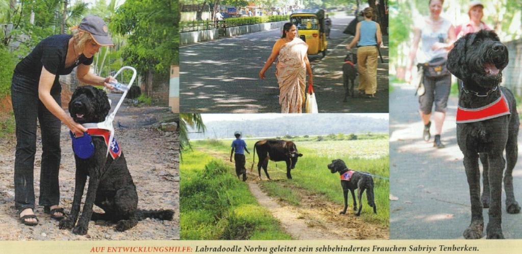 Norbu-hilft-in-Indien