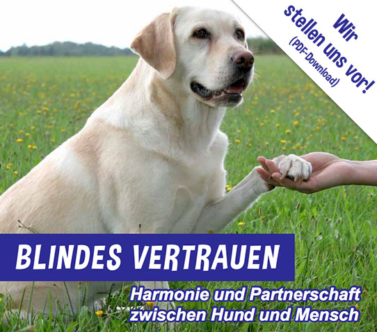 Das PDF Vorstellung der Hessischen Blindenführhundschule Blickpunkt hier herunterladen