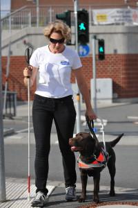 Blindenfuehrhundtraining Tanja Kohl