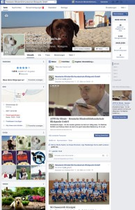 Facebook 1000 Klick Blickpunkt