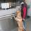 Blindenführhundtrainer gesucht !