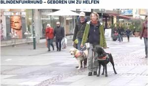RTL Hessen 06-11-15